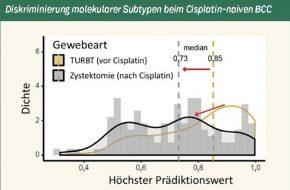 🔒 Charakterisierung des Cisplatin-resistenten Harnblasenkarzinom