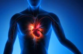 🔒 Testosteronsubstitution: Testosteronmangel und kardiovaskuläre Risiken