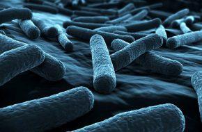 🔒 Klassifikation, Diagnostik und Therapie komplizierter Harnwegsinfektionen